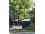 Magnum Tent Fumigation-4